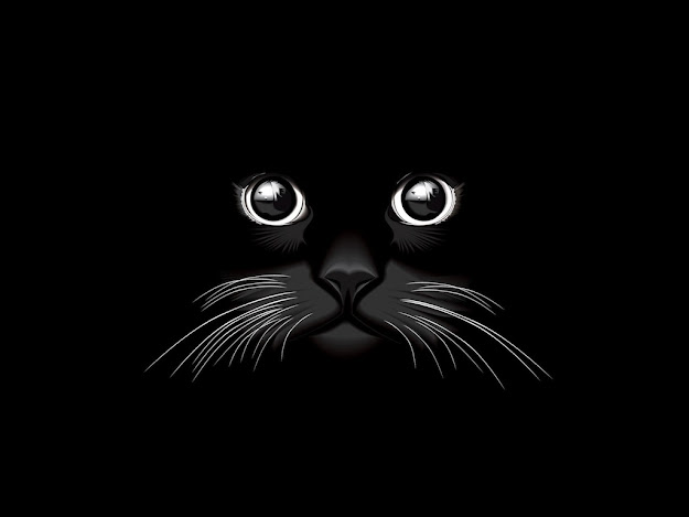 Black Cat Vector Free Download
