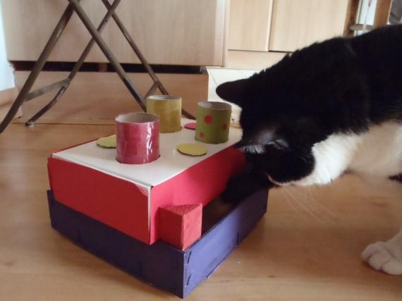 tout pour mon chat fabriquer soi m me un jouet pour son chat. Black Bedroom Furniture Sets. Home Design Ideas