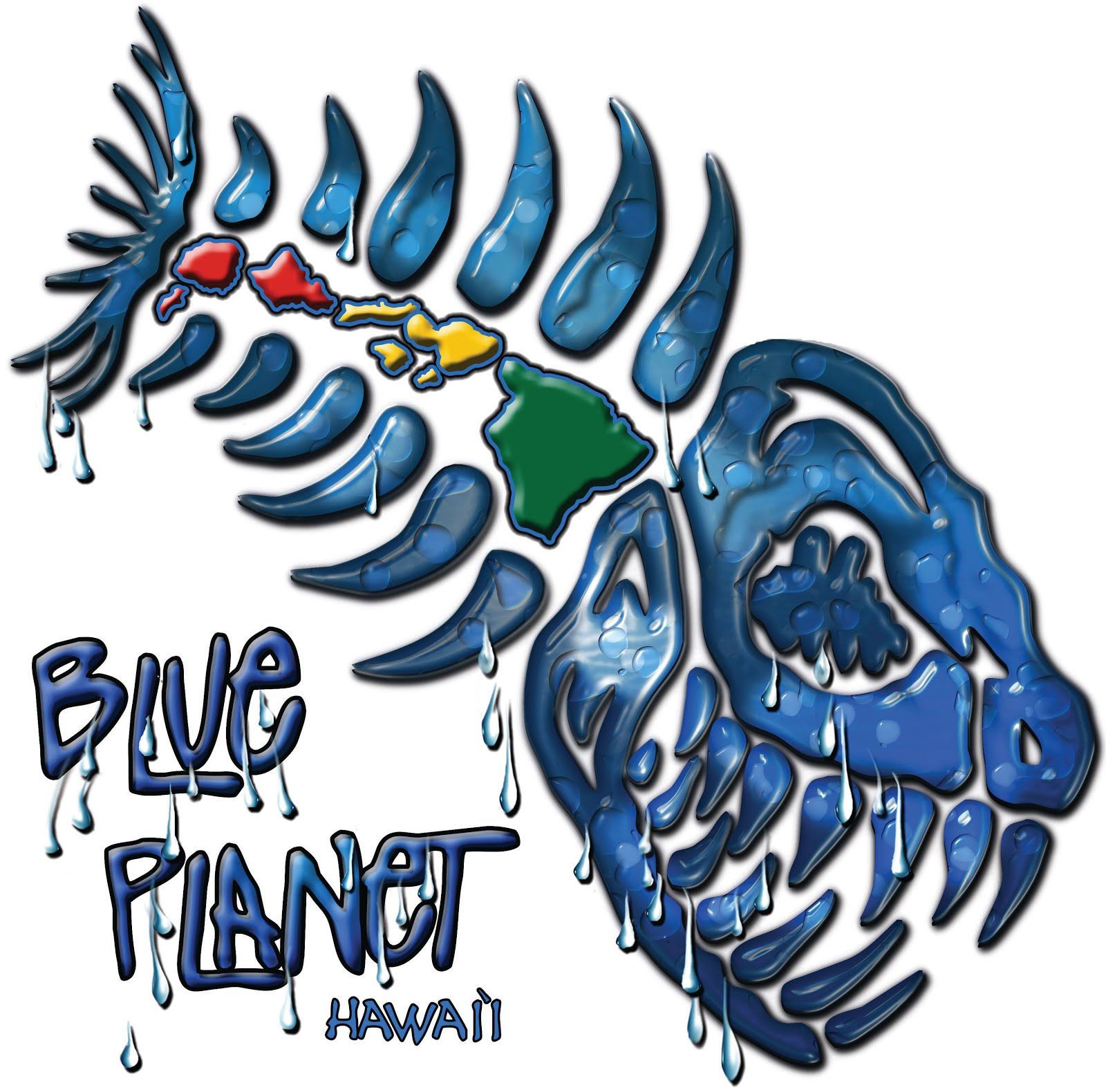 This Blog is brought to you by Blue Planet Surf