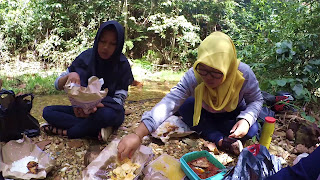 makan di air terjun dangku
