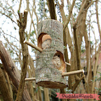 http://printables4parents.co.uk/win-homemade-natural-bird-feeder/