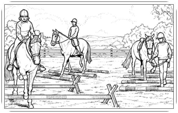 ausmalbilder pferde reiten  pferd pflegen  ausmalbilder