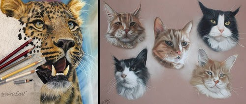 00-10-Svea-T-Animal-Portrait-Drawings-and-an-Eye-www-designstack-co