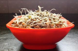 ऐसे करें मुंग-मोठ आदि अनाज अंकुरित (sprout Food)