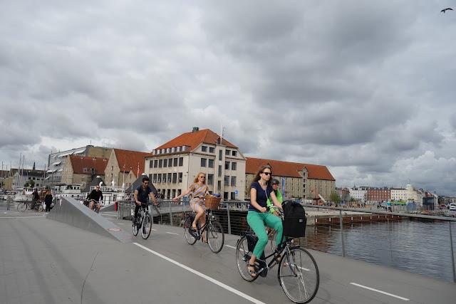 DSC01451 - The Bicycle Bridges of Copenhagen
