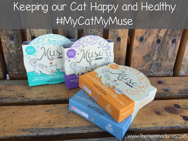 #MyCatMyMuse #ad