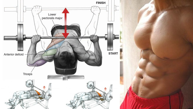 Get A Bigger Chest With Decline Bench Press All