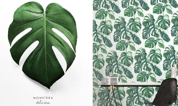 arreda con le piante, arredo moderno, consigli home
