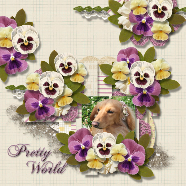 DSB  Pretty World