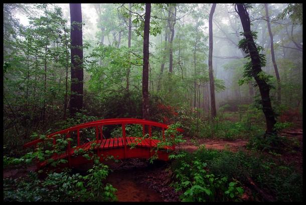 Alabama Monte Sano State Park