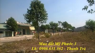 mua-lo-i12-i13-i14-my-phuoc-3