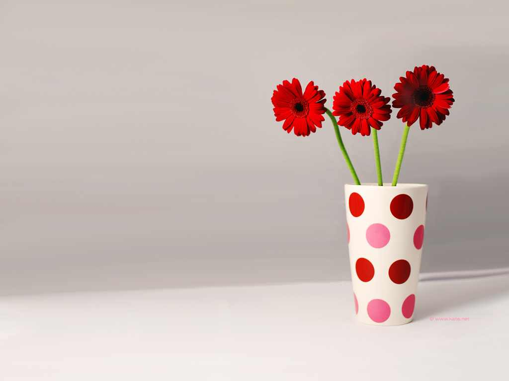 Beautiful Flower Vases Beautiful Flower Wallpapers For You Vase Of Flowers Wallpaper