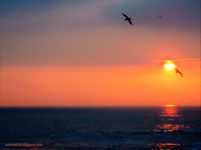 Quando um pássaro bate as asas... tudo à nossa volta, ganha um novo sentido... O céu existe... para que o mundo saiba, que ainda não está à sua altura... / When a bird flies... everything around us, it gains a new meaning... Heaven exists... to show the world, that it is not yet up to its height...
