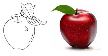 Contoh Dua Gambar Apel