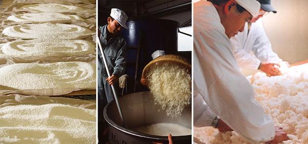 清酒釀造過程
