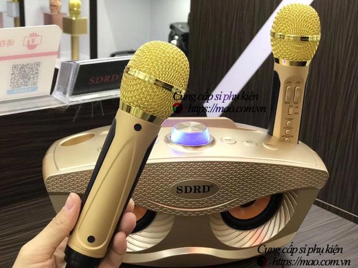 Loa karaoke SD-306 giá rẻ