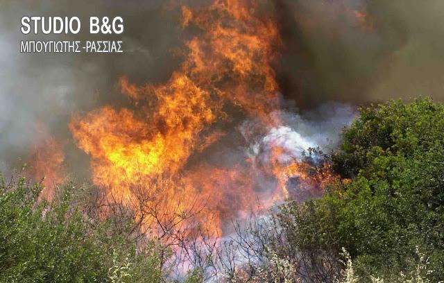 Μάχη με τις φλόγες δίνουν 120 πυροσβέστες στη Νεμέα
