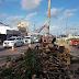 Árvores são derrubadas para obras do novo gancho Igapó