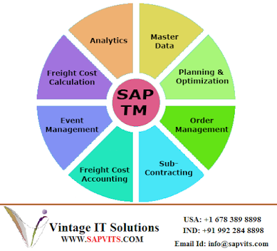 http://www.sapvits.com/project/sap-tm-online-training/