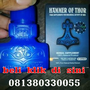 hammer of thor di jambi herbal hammer of thor di jambi