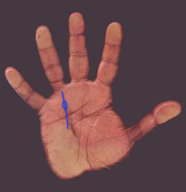 How To Avoid Lawsuit In Palmistry?