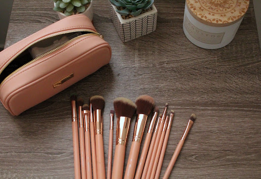 BH Chic 14-Piece Brush Set Review - Echanning