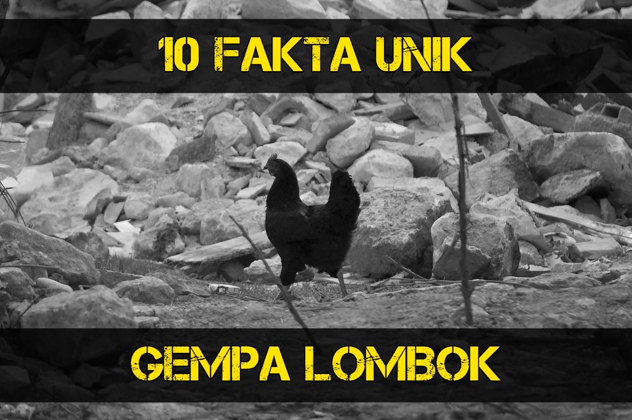 Gempa lombok, earthquake Lombok, Fakta Unik
