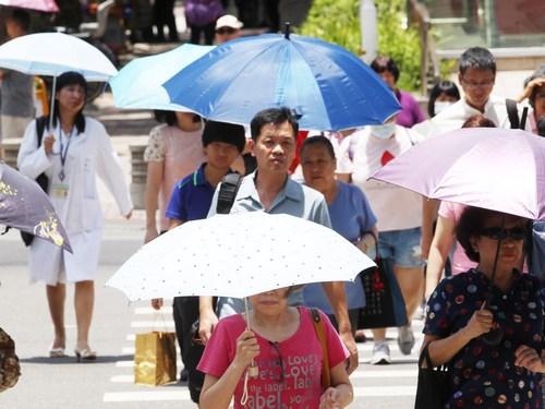 Suhu di Taipei Sudah Terlalu Tinggi Hingga Capai 38 Derajat, Waspada Kematian Mendadak