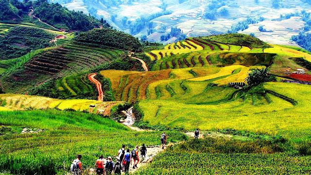 SA-PA Vietnam