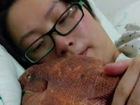 Peliharaan Wanita Ini Jadi Viral, Lihat Saat Ia Mencium dan Menyimpan Makhluk Itu di Atas Badannya