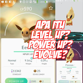 pengertian level up, power up, evolve