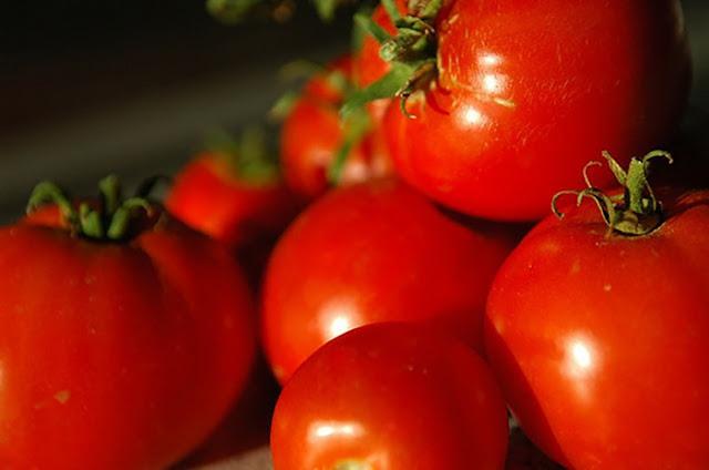 Entah dikonsumsi dengan mentah atau di masak dulu 10 Efek Samping Terlalu Banyak Mengkonsumsi Tomat