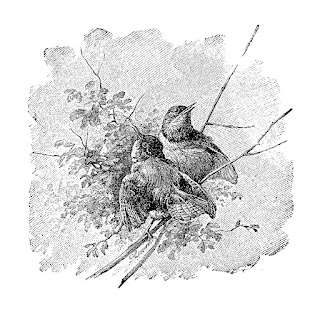 bird digital tree illustration