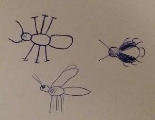 gezeichnetes Schema von Insekten