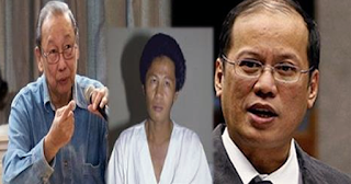 Ex-OFW to Sison, Noynoy and Buscayno: 'You are the worst thing happened into this beautiful country'