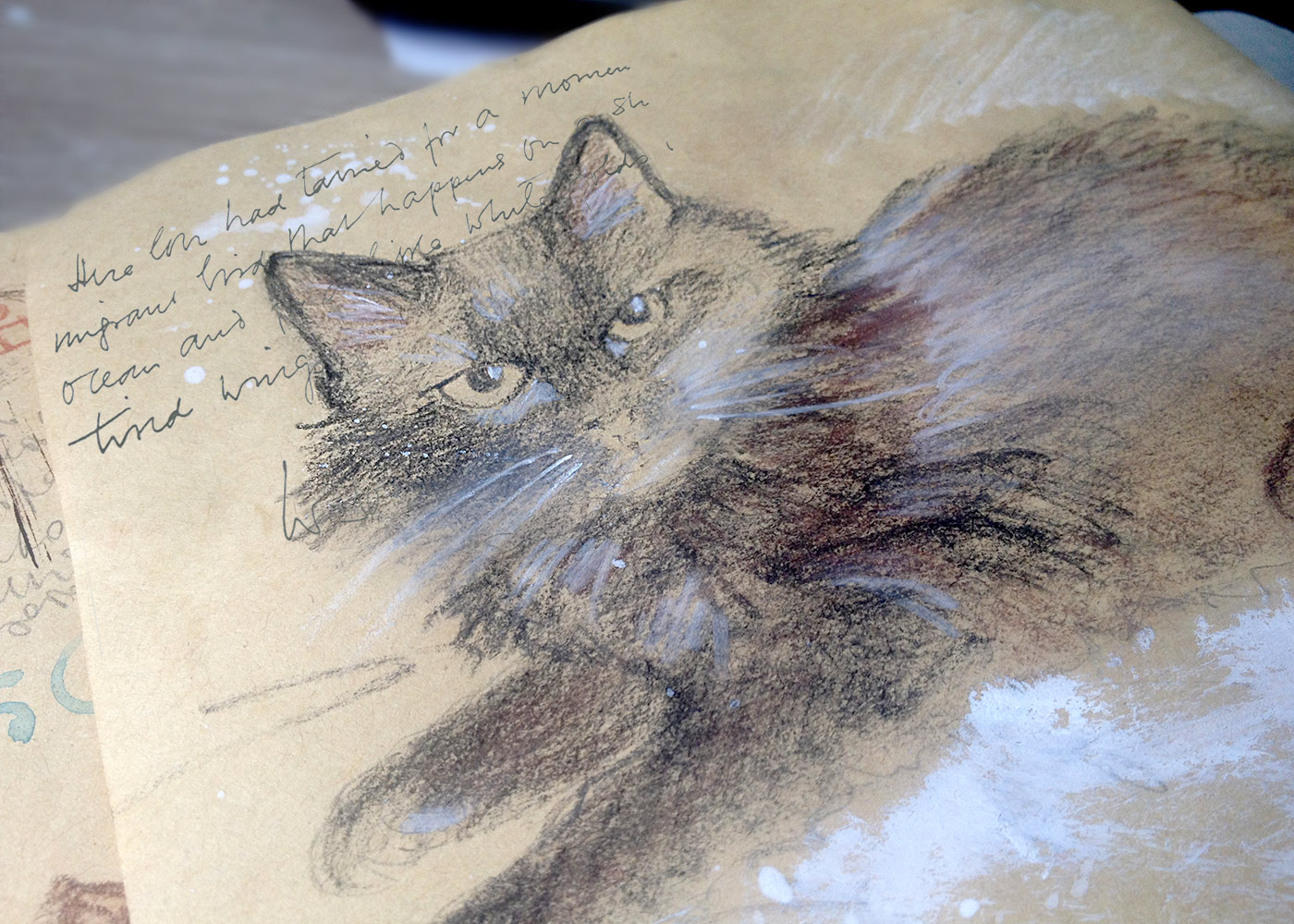 Cat Pouchkine, sketchbook page