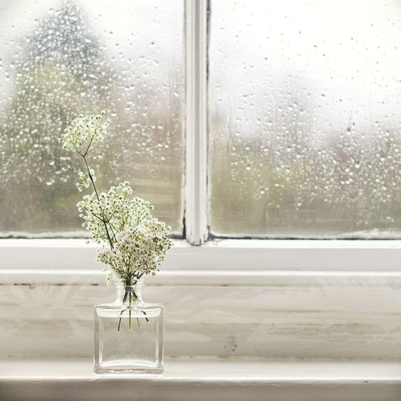 Ideias para um fim-de-semana chuvoso