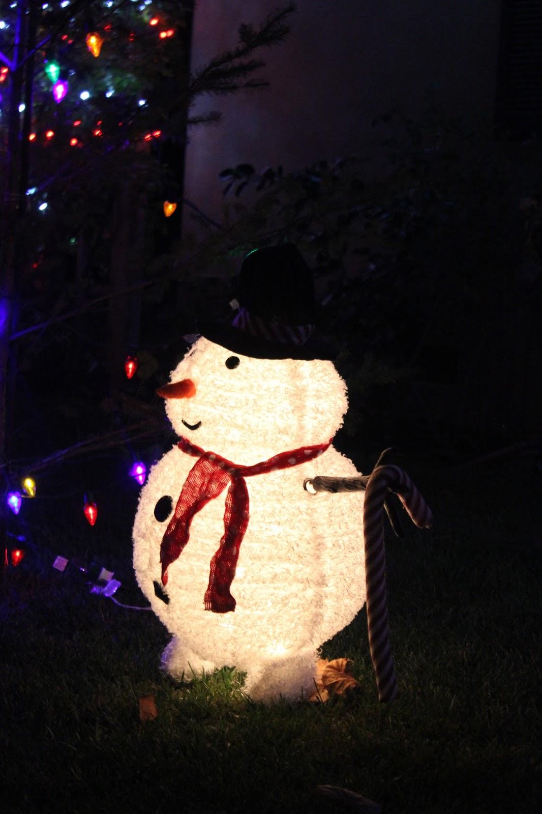 #BE8D0D Les Tribulations D'une Famille Française En Californie  5329 décorations de noel aux etats unis 1066x1600 px @ aertt.com
