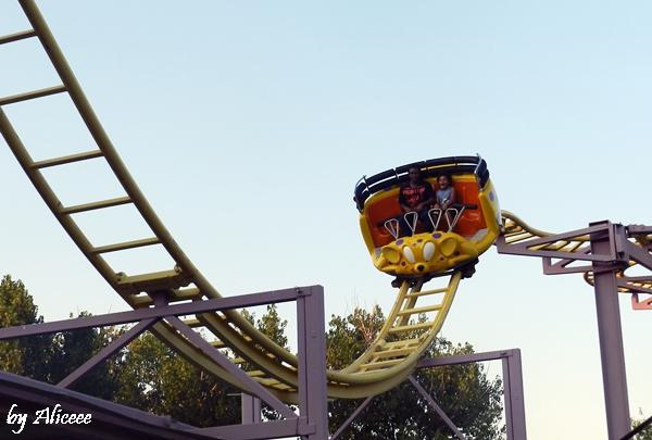 roller-coaster-parc-de-distractii-mamaia