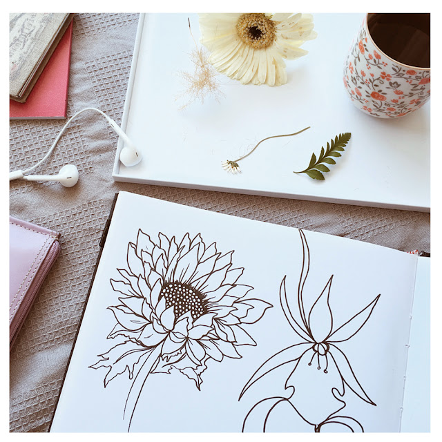 sketchbooks, botanical designs, flower drawings, Barbie McGuire
