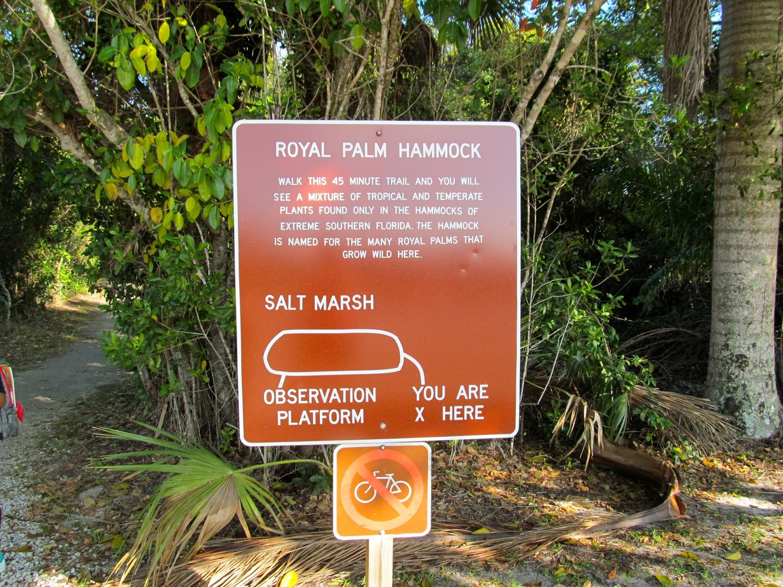 Royal Hammock Nature Trail at Collier-Seminole State Park - Naples, FL