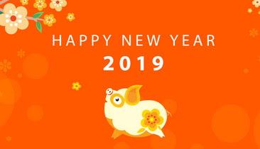 Niemstyle | Chúc mừng năm mới AE Blogger - Xuân Kỷ Hợi 2019