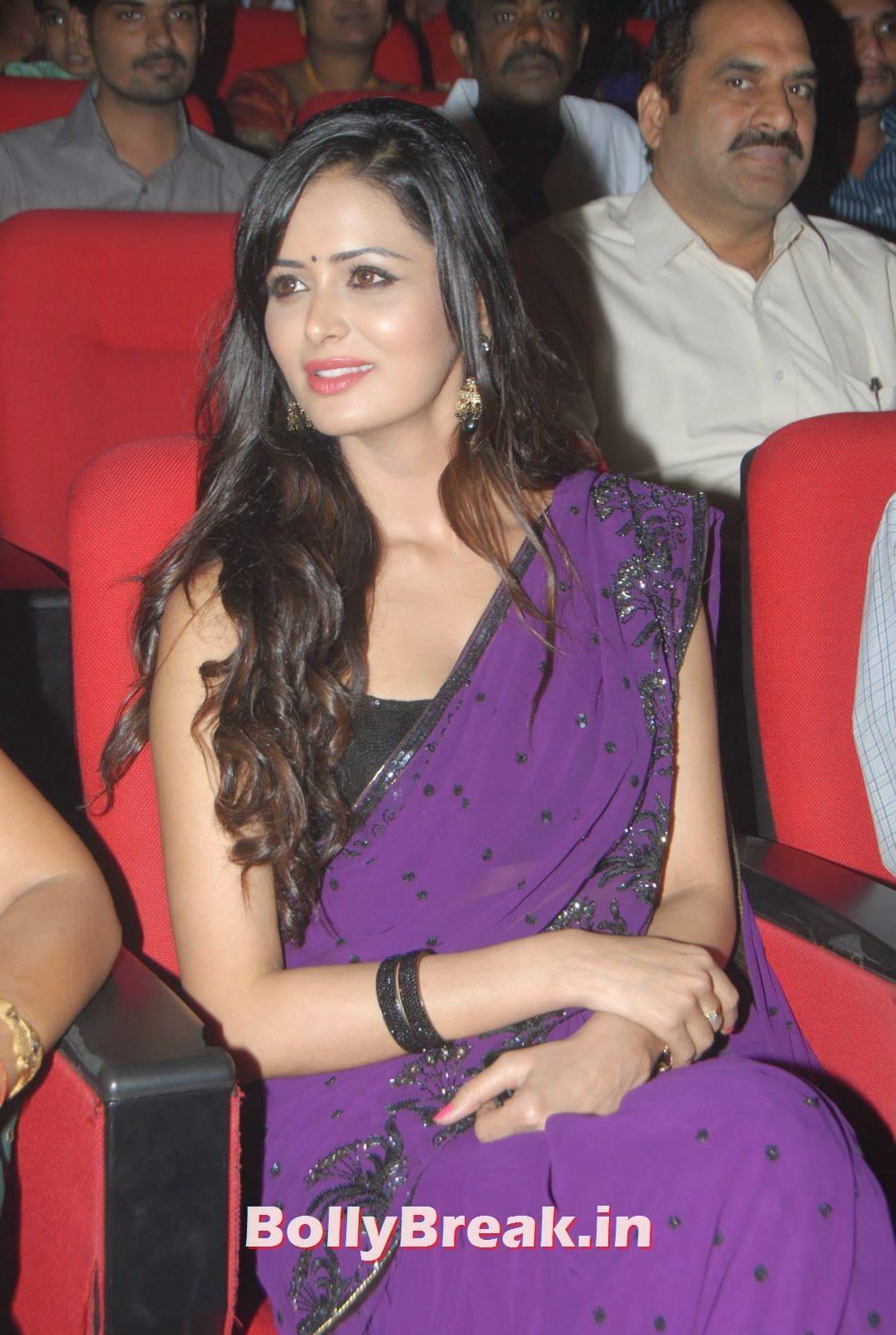 , Hot HD Photos of Actress Meenakshi Dixit in Saree at recent Event