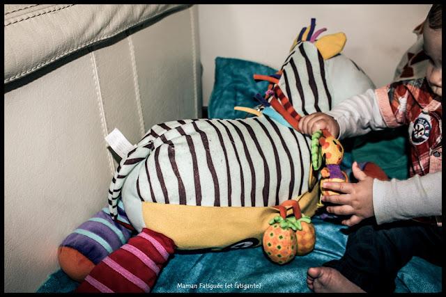 zebre bawi