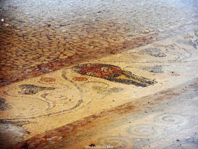 mozaika starożytnej maski oplecionej pnączem winorośli Delos Dom Masek Grecja