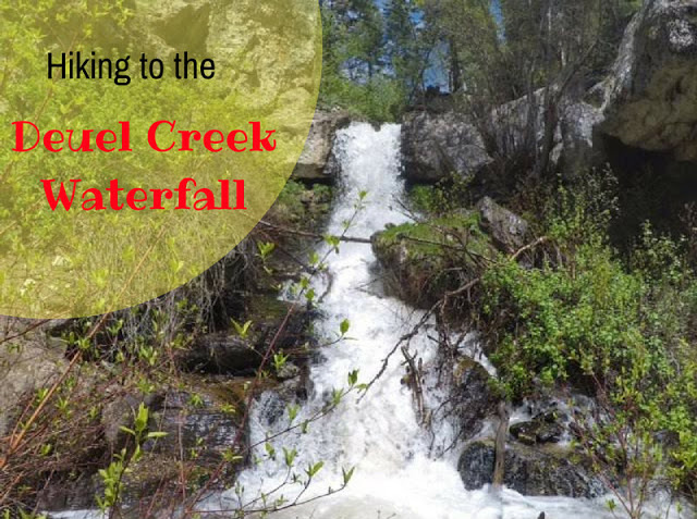 The Best Dog Friendly Waterfalls Hikes in Utah, Deuel Creek Waterfall