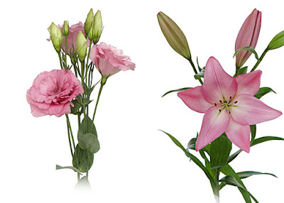 lisianthus an dlilies that are millenial pink