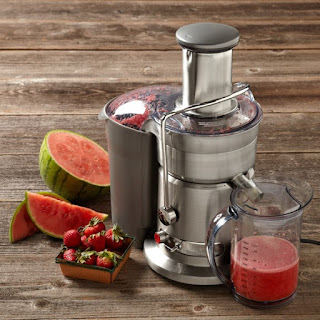 Breville 800JEXL Juice Fountain