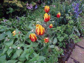 Small Garden Ideas 2018