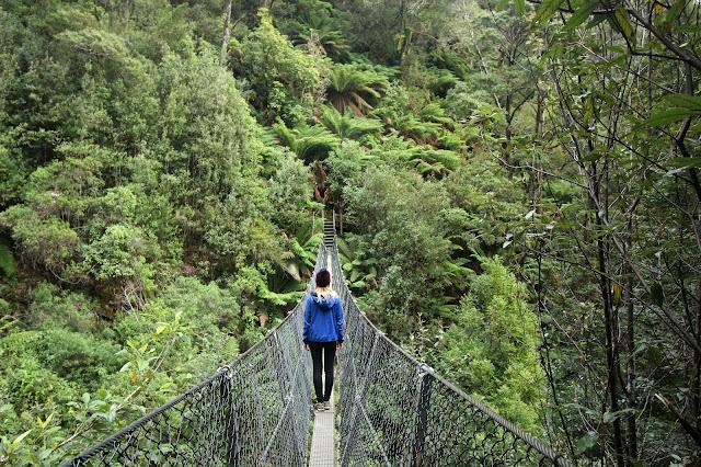 Montezuma Falls en Tasmanie